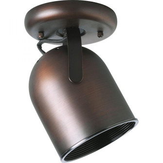 One-Light Multi Directional Roundback Wall/Ceiling Fixture (P6144-174)