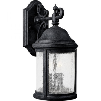 Ashmore Collection Two-Light Wall Lantern (149|P5649-31)