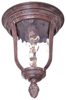 Bronze Outdoor Flush Mount (10|8999-61B)