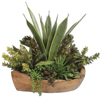 Uttermost Salar Succulents In Teak Bowl (85|60119)