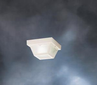 Outdoor Ceiling 1Lt (10684|9320WH)