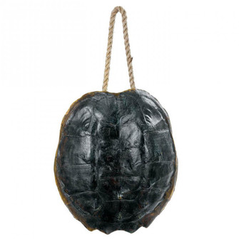 Turtle Shell Accessory (Natural) (5533 21-1044NAT)