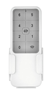Remote Control 6 Speed DC (87 980003FWH)