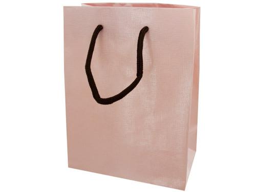 12.5x9.5 gift bag pink