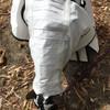 Mane Lover Pleated Hood