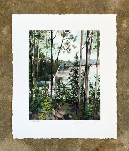 NP Lakeview 8X10