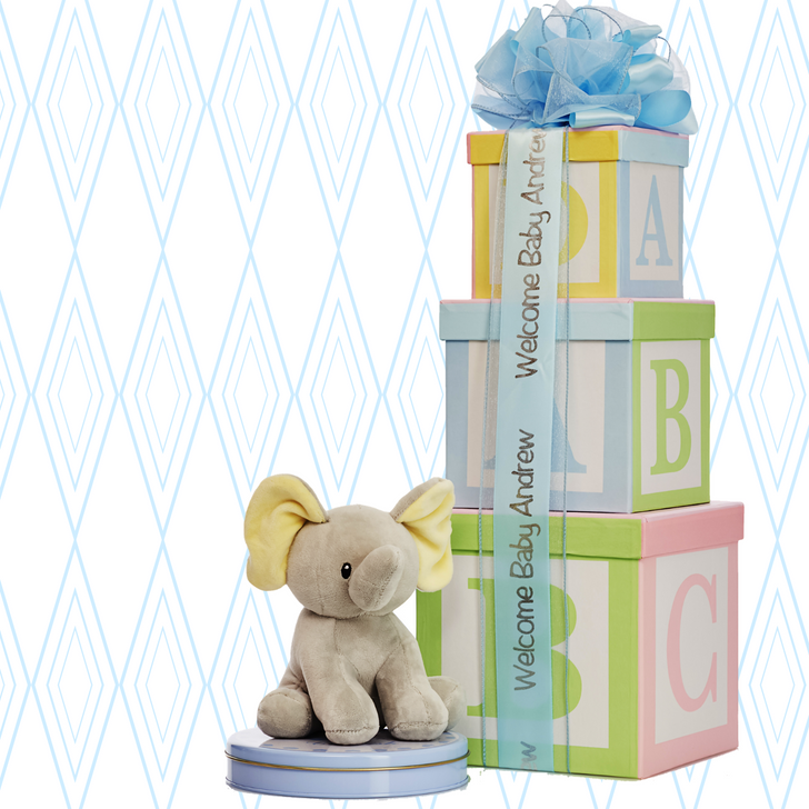Personalized Baby Gift for New Baby - Blue