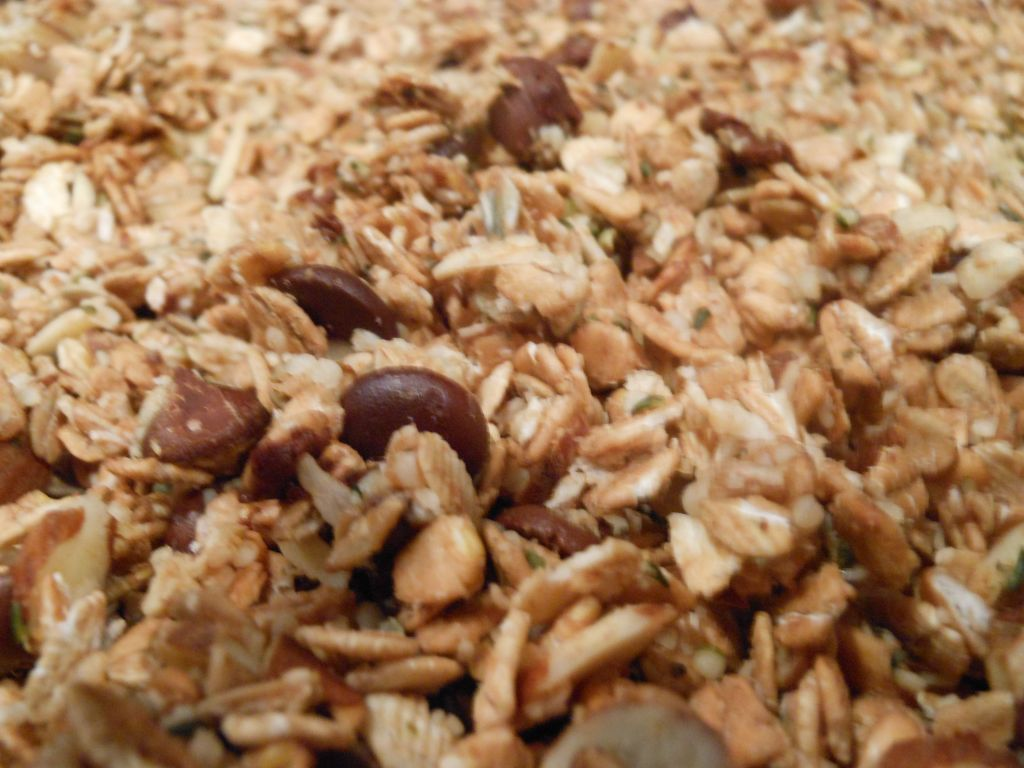 granola-with-choc-chips-cu-1024x768.jpg