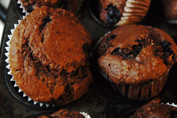 org-chocflakeblueberry-muffins.jpg