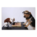 Playing Chess Wall Art Print