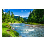 Forest And River Canvas Wall Print