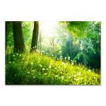 Spring Tranquil Nature Art Print