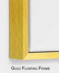 Gold Floating Frame