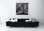 Cheetah With Cub Wall Art Print on the wall