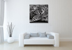 Cheetah With Cub Wall Art Print on the wall