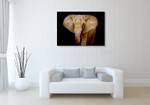 Wildlife Elephant Wall Art Print on the wall