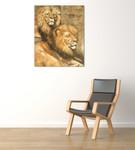 Panthera Leo on the wall