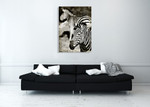 Zebras Wall Art Print on the wall