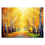 Autumn Sun Rays Wall Art Print