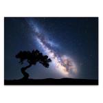 Milky Way at Night Wall Art Print