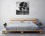 Black and White Trees Wall Art Print on the wall