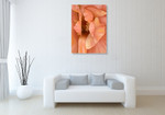 Orchid Wall Art Print on the wall