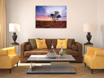 Australia Pilbara Region Wall Art Print on the wall