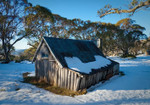 Australia Wallaces Hut Wall Art Print