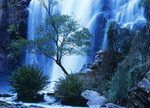 Australia Waterfall Wall Art Print