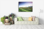 Queensland Lavender Farm Wall Art Print on the wall