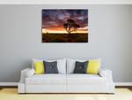 Sunset at Pilbara Region Wall Art Print on the wall