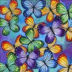 Butterflies Colour Wall Art Print