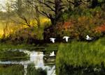 Pond Flight Wall Art Print