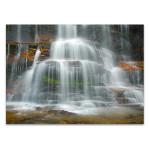 Rainforest Waterfall Wall Art Print