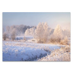 White Winter Forest Wall Print