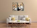 Cheetah Cubs Wall Art Print on the wall