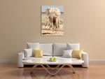 Elephant in Africa Wall Art Print on the wall
