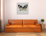Painted Butterfly I Wall Art Print on the wall