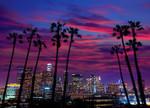 Los Angeles California Wall Print