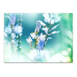 Beautiful Flower Wall Art Print