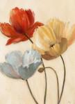 Poppy Palette II Wall Art Print