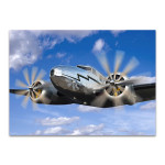 The Vintage Plane Wall Art Print