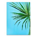 Palm Frond I Wall Art Print