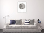 Dandelion Fluff on White Wall Art Print on the wall