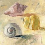 Seashells II Wall Art Print