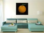 Orange Fruit Wall Art Print on the wall