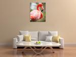 Flamingo I Wall Art Print on the wall