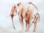Lone Elephant Wall Art Print