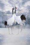 Winter Couple Wall Art Print