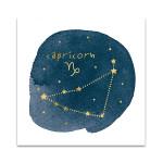 Horoscope Capricorn Wall Art Print
